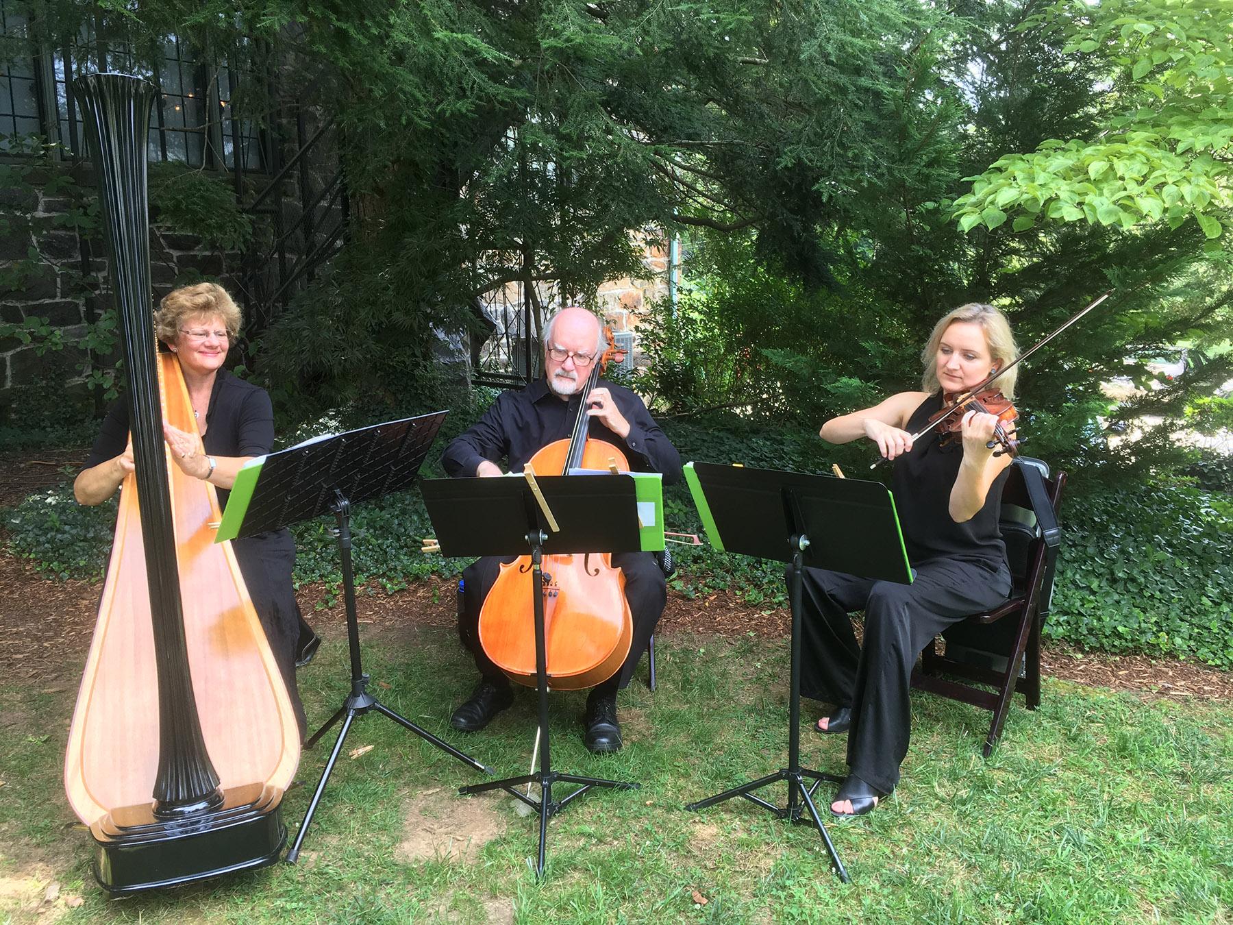 Violin, Cello and Harp at Homewood 2018